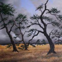 Bäume Gross Venn