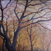 Bild_Herbstwald