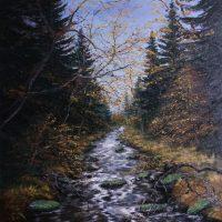 Fluss Wald